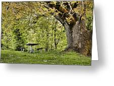 Once Upon A Picnic Greeting Card