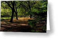 One Day In The City Park Greeting Card