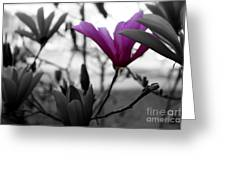 One In The Bunch Greeting Card