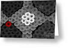One Red Flower Greeting Card