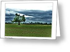 One Tree Left Greeting Card