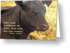 Only Cows Know Greeting Card