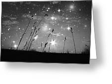 Only The Stars And Me Greeting Card