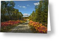 Ontario Backroad Greeting Card
