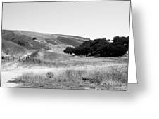 Open Country Greeting Card