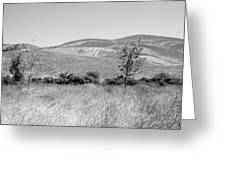 Open Hills Greeting Card