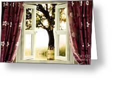 Open Window To Tree Greeting Card