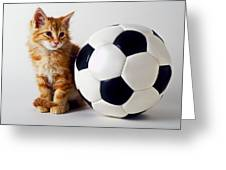 Orange And White Kitten With Soccor Ball Greeting Card