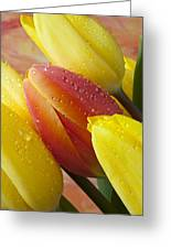 Orange And Yellow Tulips Greeting Card