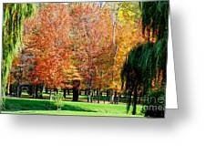 Orange Colored Trees Greeting Card