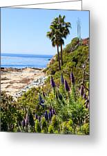 Orange County California Coastline Photo Greeting Card