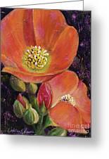 Orange Globe Mallows Greeting Card