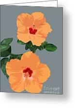 Orange Hibiscus Twins Greeting Card