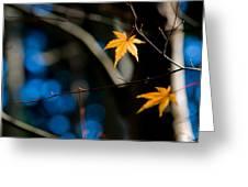 Orange Leaf On A Tree In Winter Setting Greeting Card