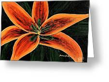 Orange Oriental Lily Greeting Card