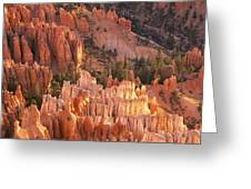 Orange Rock Formations And Trees At Greeting Card