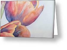 Orange Tulips II Greeting Card