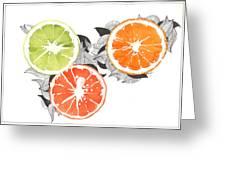 Orange Greeting Card by Viki Vehnovsky