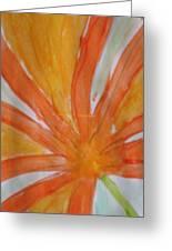 Oranje Bloemblaadje Greeting Card