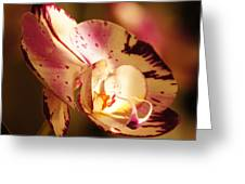 Orchid Fangs Greeting Card