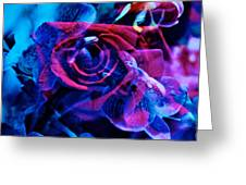 Orchid Rose Greeting Card