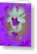 Orchid Vignette Greeting Card