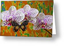 Orchids With Speckled Butterfly Greeting Card