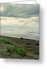 Oregon Coast 17 Greeting Card