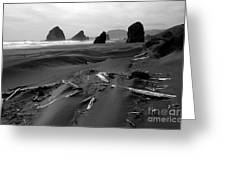 Oregon Coast Black And White Greeting Card