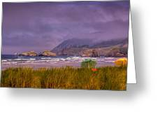 Oregon Seascape Greeting Card by David Patterson