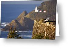 Oregon, United States Of America Heceta Greeting Card