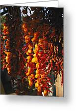 Organically-grown Peppers Are Hung Greeting Card