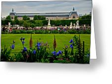 Orsay From The Tuileries Greeting Card