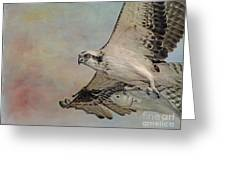 Osprey And Fish Greeting Card