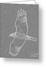 Osprey In Flight Embossed Greeting Card