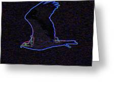 Osprey In Neon Blue Greeting Card