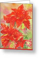 Other Poinsettia Greeting Card