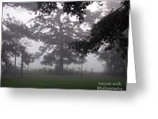 out of the Mist Greeting Card