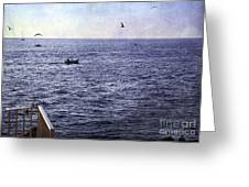 Out To Sea Greeting Card by Madeline Ellis