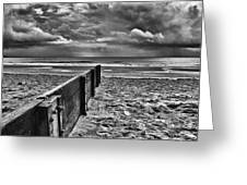 Out To Sea Monochrome Greeting Card