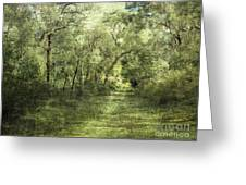 Outback Bush Greeting Card