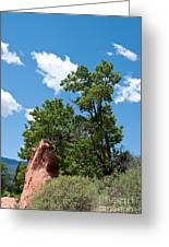Outcropping Greeting Card