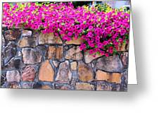 Over The Wall Greeting Card