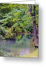Overcast Reflections At Buck Creek Greeting Card