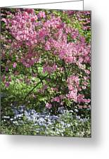Overgrown Natural Beauty Greeting Card