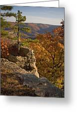 Overlook At Cecil Hollow Greeting Card
