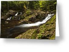 Overlook Falls 1 Greeting Card