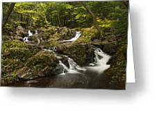 Overlook Falls 2 Greeting Card