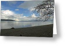 Owen Beach Greeting Card