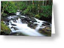 Owengarriff River, Killarney National Greeting Card